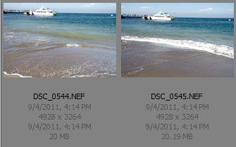 screen shot of thumbnails from Adobe Bridge