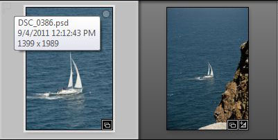 screen shot of thumbnails from Adobe Photoshop Lightroom